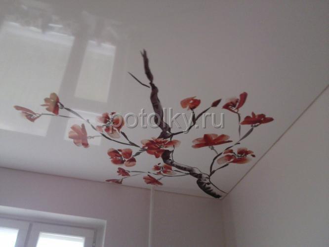 натяжные потолки фото глянец белый